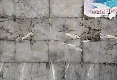 _DSC1025 (adrizufe) Tags: wall pared nikon ngc basquecountry gipuzkoa fronton arrasate mondra nikonstunninggallery aplusphoto d7000 adrizufe adrianzubia