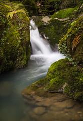Beyu Pen V (Asturias) (erligarai) Tags: verde green rio ruta canon river de asturias erreka cangas berdea onis canon24105 canoneos6d beyupen