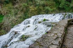 17042016DSC_0022-2.jpg (Ignacio Javier ( Nacho)) Tags: espaa flickr paisaje es facebook castillaylen naturea