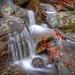 eastern waterfall creek