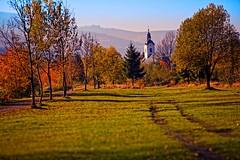 Contemplation (Pztryk) Tags: autumn sky tree church nature grass countryside village path natura jesie koci trawa drzewa wie cieka