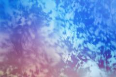 blur-dreamy-texture-texturepalace-90 (texturepalace) Tags: blur color leaves cc creativecommons dreamtextures texturepalace blurtextures