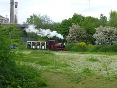 P1050754 (Hampton & Kempton Waterworks Railway.) Tags: loop devon galaday 2015 darent