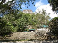 """Tikal: le Temple à la Double Tête de Serpent, totalement envahi par la végétation <a style=""""margin-left:10px; font-size:0.8em;"""" href=""""http://www.flickr.com/photos/127723101@N04/26145941272/"""" target=""""_blank"""">@flickr</a>"""