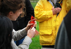 IMG_7727 (Mat_B) Tags: red color male bird fun spring education bright cardinal feathers days volo event international migratory bog wetland banding 2016