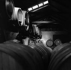 Adventures in Film (Shooting Ben) Tags: wood light blackandwhite bw film coffee contrast mediumformat dark shadows natural wine drink barrels australia victoria 120film winery yashica yashicamat leadinglines caffenol caffenolc