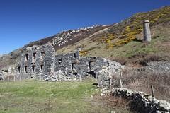 Llanlleiana (Rory Francis) Tags: coast mon coastalpath ynysmon arfordir cemaes sirfon cymdeithasedwardllwyd llwybrarfordircymru