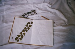 (neptunauta) Tags: flowers autumn plants white writing vintage notebook glasses poetry kodak pale yashica bedsheets pressed ultramax