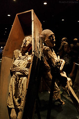 Museo de las Momias de Guanajuato (rubn.espinosa) Tags: people brown history tourism museum mexico skeleton death cafe scary gente time body expression zombie fear ghost perspective culture conservation appreciation muerte esqueleto freak terror rest guanajuato perspectiva tribute museo tradition corpse costumbres turismo rare mummies fantasma miedo historia cultura descanso customs raro cadaver cuerpo momias tiempo tradicion tributo homenaje expresion conservacion apreciacion