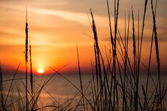 sunset (1 of 1)-2 (tamimabulhassan) Tags: sunset moon beach couple shoreline deathstar