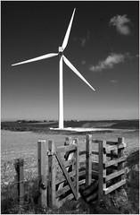 Wind Turbine (Pete Ivermee) Tags: bw white black monochrome cornwall wind style east turbine blades newlyn
