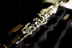 After practice (Z!SL) Tags: musician music zeiss logo sony diagonal instruments clarinet sonnar selmer carlzeiss mirrorless aclarinet sonyphotographing selmerparis emount minoltaemount sel24f18z sel24f18za sel24f18 sonnarte1824 sonyflickraward nex5r sonnar2418za selmerparisclarinets self24f18 selmerprivilege clarinetina
