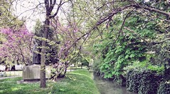 Primavera a Udine (Cristina Birri) Tags: parco primavera spring friuli udine