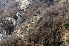 Val d'Aosta - le traverse di Arnad, la bellissima mulattiera percorsa (mariagraziaschiapparelli) Tags: primavera valdaosta escursionismo camminata arnad allegrisinasceosidiventa traversediarnad