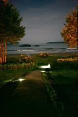 (blinkd.ca) Tags: nightshot path sony tofino sonya7sii