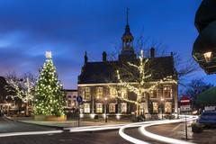 Schiedam, Grote Markt (Jan Sluijter) Tags: christmas holland tree netherlands restaurant nederland stadhuis brasserie kerstboom schiedam zalig visitholland