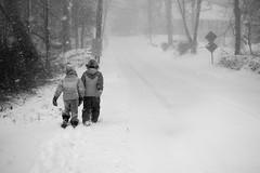 snow (Homemade) Tags: winter blackandwhite bw snow ny newyork children snowstorm snowing blizzard westchestercounty southsalem lewisboro sonydscrx100 kitchawanroad winterstormjonas