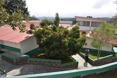_DSC9561 (union guatemalteca) Tags: iad guatemala union dia educacin juba guatemalteca adventista institucioneseducativas