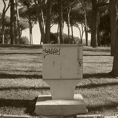 Z0140090 (20x25) Tags: bw rome roma square noiretblanc nb squareformat ricoh ricohgr