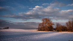 Last Light on the Field (MattPenning) Tags: trees winter sky snow field clouds shadows pentax farm sigma potd rays k5 springfieldillinois skyclouds mattpenning kmount sigma1020mmf456exdc mattpenningcom penningphotography justpentax pentaxk5
