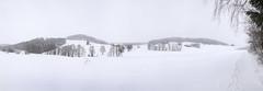 """Winter impressions from the """"Mhlviertel"""", Upper Austria... (karlmayer56) Tags: winter panorama snow fog mhlviertel schneswetter winterwanderung hikinginsnow grauertag"""