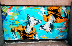 Foxes - Their vision - Street art by Mateo - Montreal (Exile on Ontario St) Tags: street blue orange streetart canada color art geometric colors animal animals wall shirt triangles painting graffiti triangle mural paint montral geometry montreal under shapes bleu vision fox figure easy dots shape pressure visual mur mateo foxes figures gomtrie visualart anthropomorphic graffitis underpressure fuera parallelogram manipulate murale parallelograms canids canid canidae paralllogramme canids mathieubories paralllogrammes