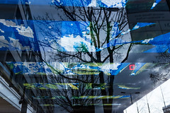 Branches (Gary Kinsman) Tags: reflection tree london glass bare branches busstop busshelter layers w11 nottinghillgate 2016 fujifilmx100t fujix100t