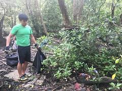 1-Env&CivSoc-World-Water-Day-LCK-Cleanup-26Mar16 (Habitatnews) Tags: mangrove capt nus worldwaterday limchukang iccs