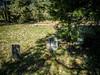 Mount Zion Church Cemetery-011 (RandomConnections) Tags: cemetery southcarolina highway14 greenvillecounty mountzionchurch