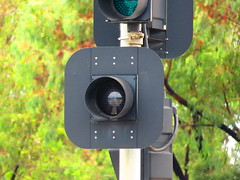 Braums Flashing White Pedestrian Signal - The Grove Way/Atlantis Dr/Aeolian Dr intersection, Golden Grove (RS 1990) Tags: light white march traffic pedestrian led adelaide intersection 10th flashing thursday signal southaustralia 2016 goldengrove braums atlantisdr thegroveway aeoliandr