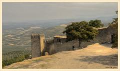 Mar de olivos a los pies del Castillo (Jose Manuel Cano) Tags: espaa castle landscape spain olive paisaje muralla castillo jan olivo sabiote nikond5100