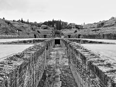 Itlica (anfiteatro) (pbernalmac) Tags: roman paisaje ruinas romanos itlica