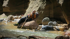 The Narrows, Zion (whkinder) Tags: zion thenarrows