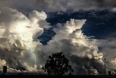 Temporale Biellese (Borgo Armonico) Tags: strada nuvole cielo albero pioggia temporale fulmine