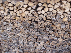 Well arranged logs (seikinsou) Tags: winter japan spring log nikko length firewood arrange