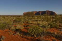 DSC06990 (slackest2) Tags: grass rock sunrise australia uluru kata tjuta northern ayres scrub olgas territory