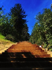Stairway (Johnny Worldadventurer) Tags: park blue sky tree green nature stairs climb heaven hike stairway trail summit fitness ascend sycamorecanyon diamondbar