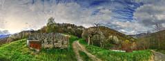Les vignes protges des sangliers... (yoduc73) Tags: fleurs montagne alpes cherry blossom vine savoie vignes printemps hdr panoramique tarentaise cerisiers