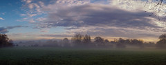 Loddon valley (aistora) Tags: auto uk morning pink blue england sky panorama orange mist painterly tree green field yellow misty fog thames clouds zeiss rural sunrise t landscape reading early riverside britain twyford pano sony wide foggy meadow pasture automatic pastures 24mm sonar alpha f18 process pastoral scape berkshire postprocess sweep pse edit topaz loddon lightroom wokingham incamera ilce thamesvalley a6000 sel24f18za