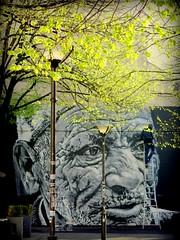 H BEIKIRCH au M.U.R. (YOUGUIE) Tags: streetart paris graffiti peinture lemur graff printemps ecb marocain beikirch hendrikbeikirch
