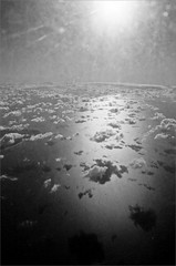 (frscspd) Tags: sea film sunshine plane flying pentax flight fisheye xp2 cj cumulus lookingdown ilfordxp2 mx ilford channel contrejour cirrocumulus cirrus filmgrain stratocumulus thechannel pentaxmx lowcloud 17mm 17mmfisheye ilfordxp2400bw 20160129 00390029