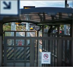 Colas Clubclass. (-Metal-M1KE-) Tags: station train place tug enjoyment sixty tanks membership freighttrain platform4 colas clubclass linsdey class60 firstclasslounge colnbrook colasrail goldlevel executivelevel eastmidlandsparkway colnbrooklindsey