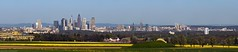 Frankfurt blossoming Skyline Panorama (frawolf77) Tags: panorama skyline deutschland spring hessen frankfurt main capital hauptstadt feld felder highrise rhein raps canola finance frhling metropole hochhaus wolkenkratzer ffm finanz