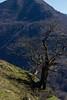 Irubelakaskoa-3 (enekobidegain) Tags: mountains montagne monte euskalherria basquecountry pyrénées pirineos mendia paysbasque nafarroa pirineoak bidarrai itsasu itsusikoharria