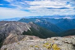 mountain spine descent (ma vie en rouge) Tags: newzealand descent scree spine marlborough thruhike teararoa mountainspine mountrichmondforestpark mountrintoul