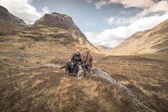 Family shot at Glencoe (explore) (m-n-g photography) Tags: family blue sky mountains dogs happy scotland collie border terrier glencoe 14mm samyang borador