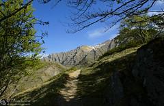 Finestra dal sentiero per le cascate (EmozionInUnClick - l'Avventuriero's photos) Tags: panorama sentiero laga