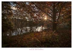 Autumn Sunset Mountain Lagoon (Dave Whiteman - AU) Tags: autumn sunset landscape australia bluemountains newsouthwales mountainlagoon samsway
