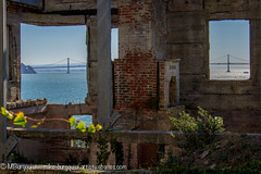 View from the wardens house (Mike Burgquist) Tags: california park old bw white black rock danger vintage dark island bay gangster al high dangerous san francisco alone escape darkness control sink decay interior room grunge guard cell tags retro prison criminal national area waters alcatraz chilly isolation lonely walls costs difficult warden solitary cells punishment operating activists felon prisoner sanfransisco murderer scarface birdman penitentiary capone incarceration confinement escaped supermax felons ricardmn