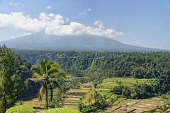 Mont Agung (Claude-Olivier Marti) Tags: bali indonesia asia mount asie agung indonsie